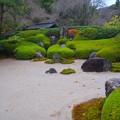写真: 明月院枯山水 #湘南 #鎌倉 #kamakura #寺 #temple #紅葉