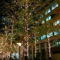 丸の内のイルミネーション #xmas #イルミネーション #東京