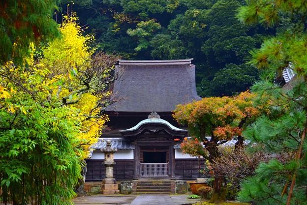 国宝・円覚寺舎利殿 #鎌倉 #kamakura #北鎌倉 #寺 #temple #紅葉 #autumnleaves