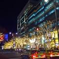 煌びやかな表参道 #表参道 #イルミネーション #クリスマス #東京 #illumination #xmas #cristmas #omotesando #tokyo