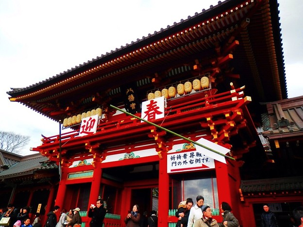 初詣準備万端の鶴岡八幡宮 #鎌倉 #kamakura #japan #湘南 #神社