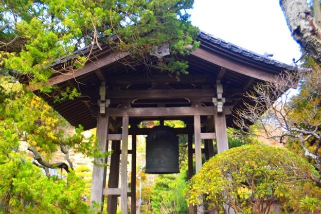 寿福寺 鐘楼 #鎌倉 #kamakura #湘南 #temple #寺 #mysky