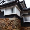 写真: 備中松山城
