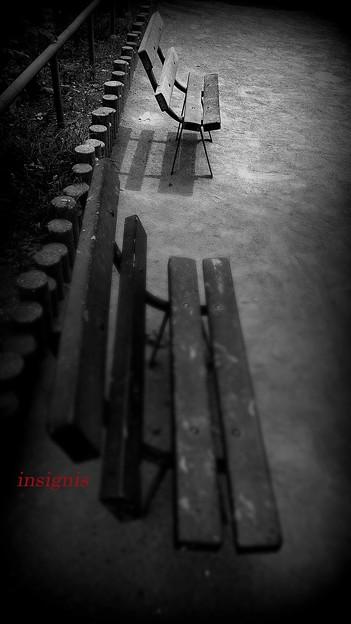 吉原公園.......