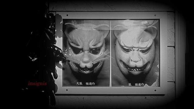 写真: 天狐(てんこ)......