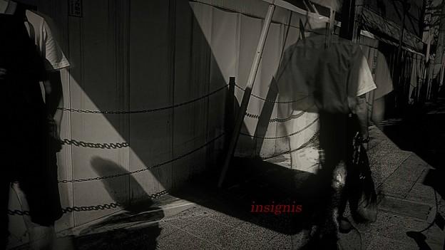 Photos: 連鎖.......