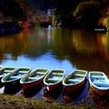 晩秋の候.......