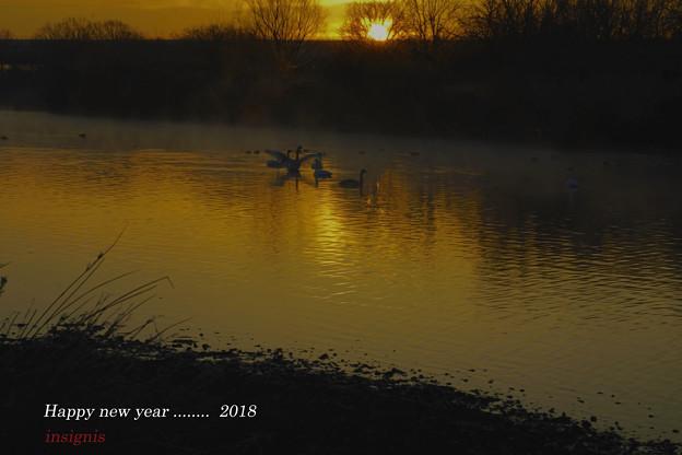 写真: Happy new year ......2018