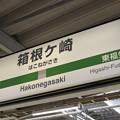 2番線駅名標 [JR東日本 箱根ヶ崎駅]