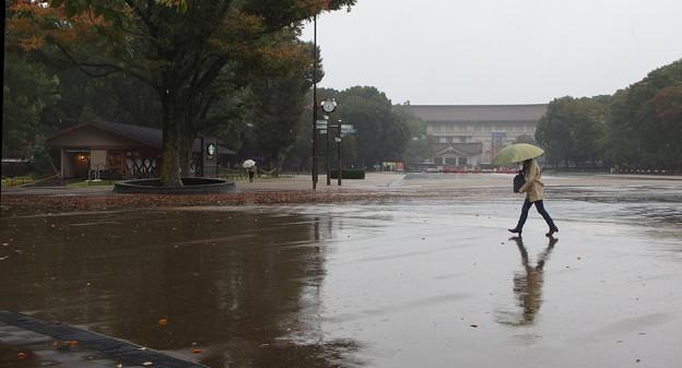 雨の公園861st3