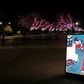 写真: 夜の公園718yoru