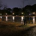 写真: 雨の公園0171yoru