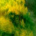 写真: 木枯らし吹いて