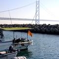 写真: 大漁旗揚げた
