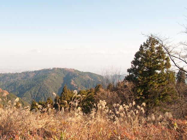 小仏城山の頂上にて