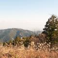 写真: 小仏城山の頂上にて