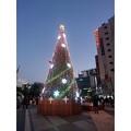 写真: 基町クレド・パセーラ クリスマスツリー