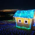 写真: ドイツ村小屋