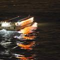 写真: 屋形船