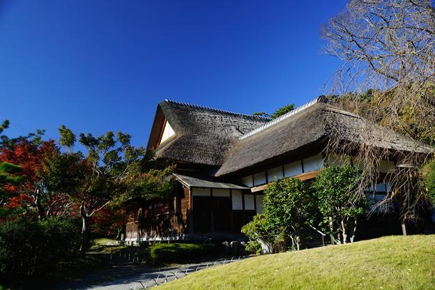冬の鶴翔閣