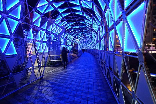 青いトンネル