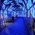 写真: 青いトンネル