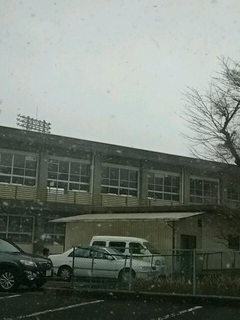 とうとう振り出した雪