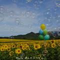 Photos: 1500296627_77