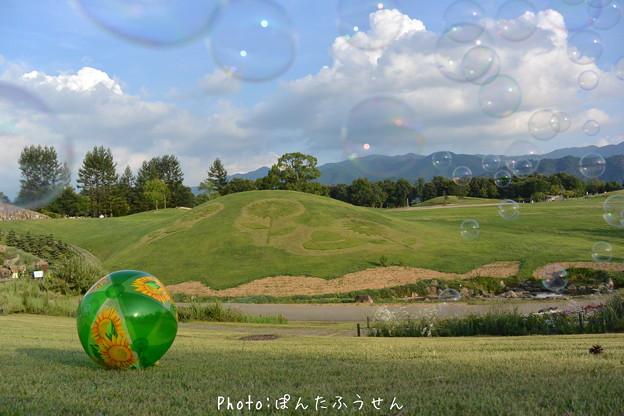 写真: 真夏のいちページ