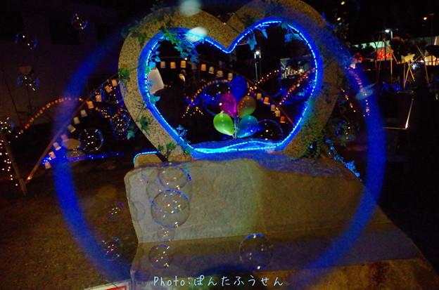 Photos: 1504536948_15