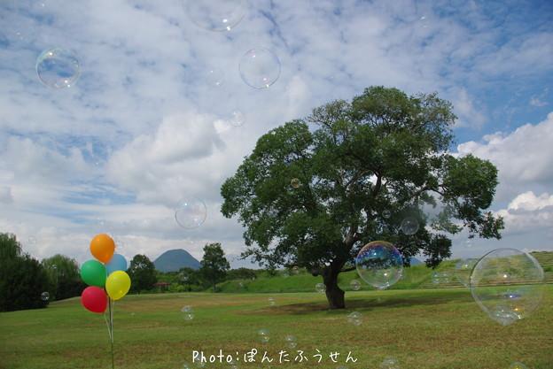 写真: 1504816697_44
