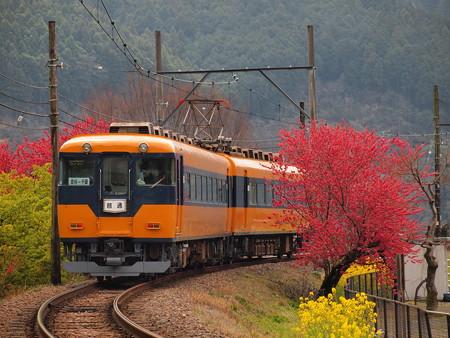 大井川鐵道16000系普通  抜里~川根温泉笹間渡01