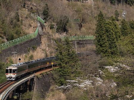 キハ85系ワイドビューひだ 高山本線下呂~焼石11