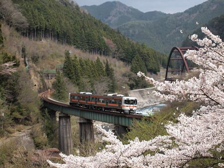 キハ25形普通 高山本線下呂~焼石04