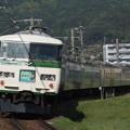 写真: 185系特急はまかいじ 中央本線下諏訪~岡谷02