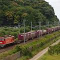写真: EF510貨物 東海道本線彦根~米原02