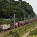 写真: EF510貨物 東海道本線彦根~米原04