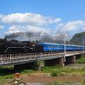 写真: D51試運転 北陸本線河毛~高月03