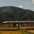 写真: N700系のぞみ 東海道新幹線米原~岐阜羽島01