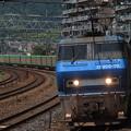 写真: EF200貨物  サントリーカーブ03