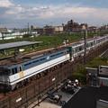 写真: EF65 メトロ13000系甲種輸送 東海道本線向日町~桂川