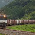 EF64貨物 中央本線落合川~坂下01