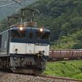 EF64貨物 中央本線落合川~坂下05