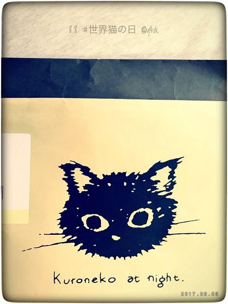 Photos: Kuroneko at night. ~新黒猫~8.8 #世界猫の日