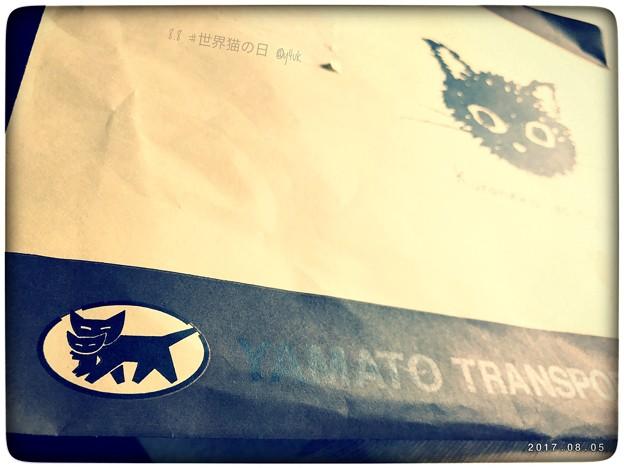 Photos: クロネコヤマト公式Newキャラ ~8.8 #世界猫の日