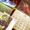 写真: もぅ秋の肌寒さ、もぅ9月スタート ~岩合光昭にゃんこ・信州ソバ畑・猫川柳・カレンダー
