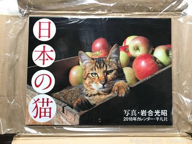 """ねこ写真が生きてる~岩合光昭ワールド全開~""""日本の猫カレンダー""""もう到着オーラに悶絶"""