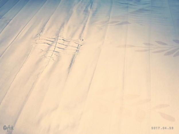 Photos: なくなく捨てた(´;ω;`)~破けるまで愛してた~一途な温もり~長いあいだ~長い電気毛布