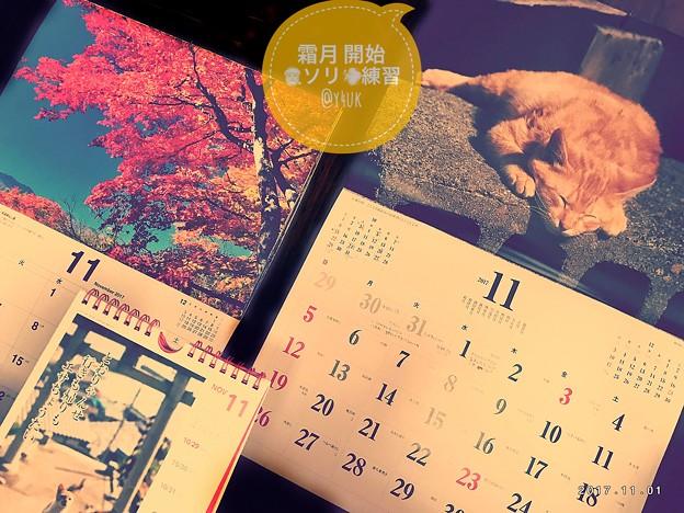 霜月開始Xmas開始~岩合光昭さん茶トラ~信州紅葉~カレンダー~November started 11.1