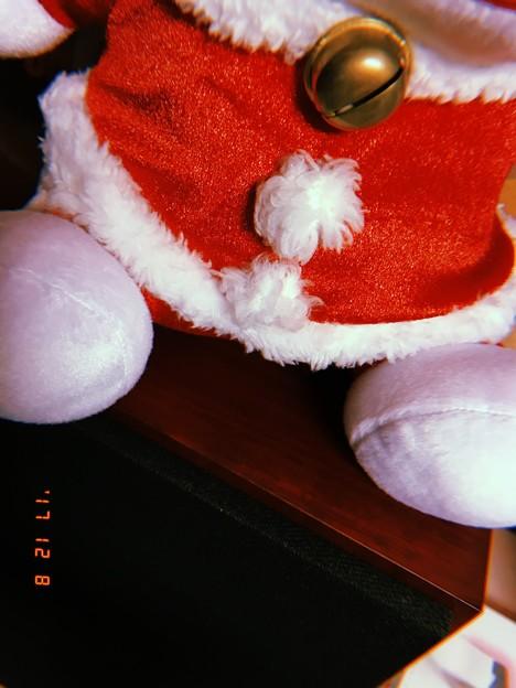 Photos: 君は誰?~Santa(cat?) on B&W listening Xmas songs~フィルム想い出~